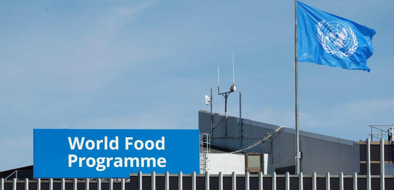 Programa Mundial de Alimentos |Business Insider Mexico