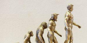 Los humanos estamos atravesando por una serie de «microevoluciones», de acuerdo con un nuevo estudio