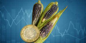 La recuperación económica pierde tracción; México crece solo 1.1% en agosto por caída en actividades agropecuarias