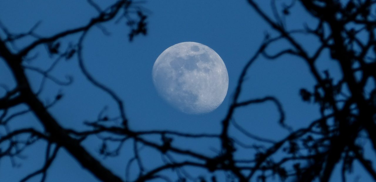 luna azul |Business Insider México