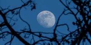 La luna azul, el fenómeno astronómico que podrás contemplar la noche de Halloween