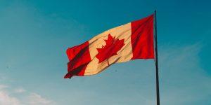Los estadounidenses están buscando en Google cómo pueden mudarse a Canadá durante una elección divisiva