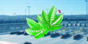 La Guardia Nacional y el Ejército Mexicano aseguran gomitas de mariguana en la aduana de Tijuana