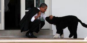 Champ y Major son las nuevas «primeras mascotas» de la Casa Blanca; conoce a los animales de compañía en la política de Estados Unidos