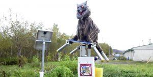 Japón usa lobos robot para ahuyentar a osos salvajes
