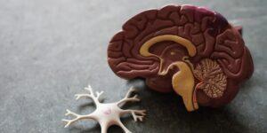 La clave para detener el alzheimer está en los datos, según Bill Gates