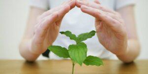 6 trucos de dinero que aprendí leyendo «Maestra millonaria» que constantemente comparto con amigos