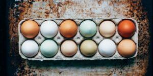Huevos rojos contra huevos blancos: cuáles comprar y por qué