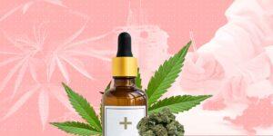 6 razones por las que las mujeres deberían emprender en la industria del cannabis