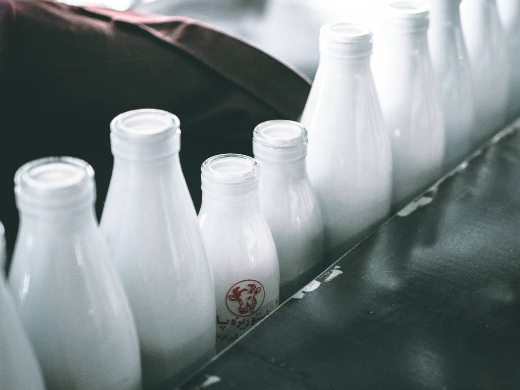 leche tipos