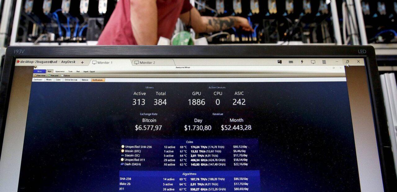 programador bitcoins contraseña