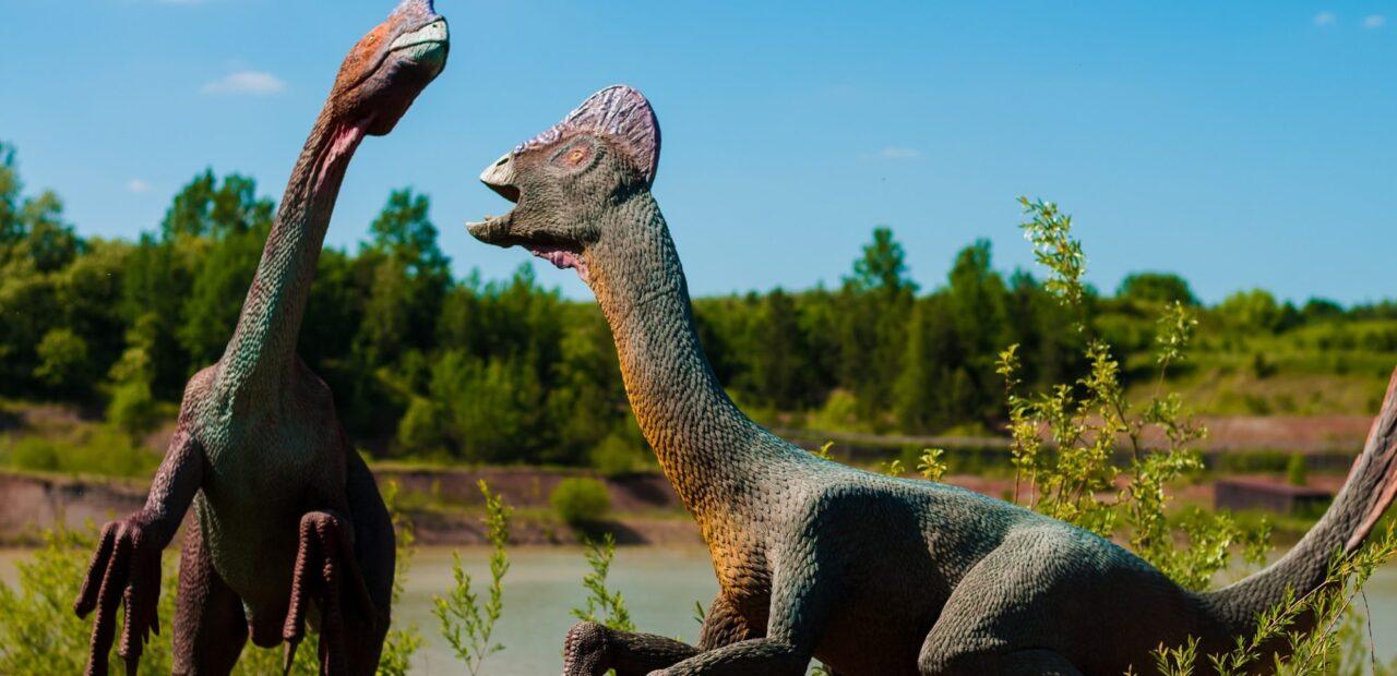 sexo_dinosaurios |Business Insider México