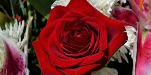 El 14 de febrero se divide entre las ventas de coronas de flores para difuntos y arreglos para San Valentín
