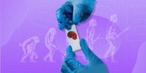 Una ventaja genética heredada de los neandertales podría dar a algunas personas un 22% menos de riesgo de Covid-19 grave