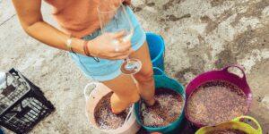 Por qué el vino de Oporto todavía se hace pisando uvas
