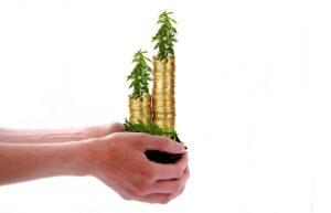 3 pasos financieros cruciales que los emprendedores deben tomar después de recaudar fondos, según fundadores de startups