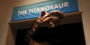 Un ejemplar de titanosaurio —el dinosaurio más grande que caminó sobre la Tierra— descubierto en Argentina es el más antiguo registrado hasta ahora