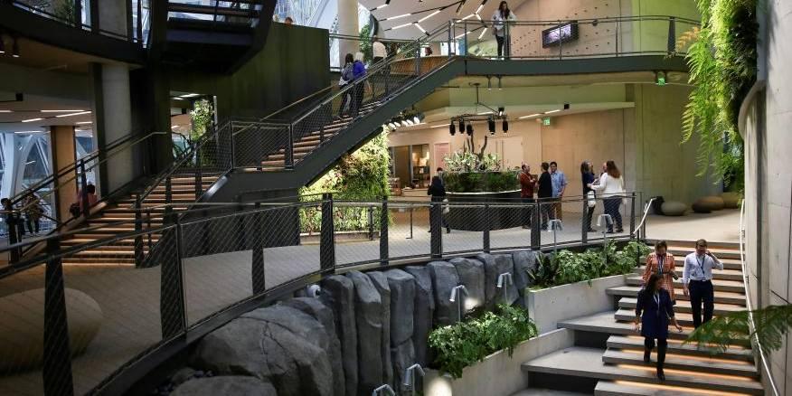 becarios Amazon | Business Insider México