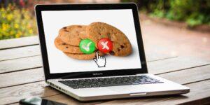 2 opciones para las empresas que se preparan para el futuro cookieless