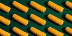 El maíz toca su precio más alto desde 2013 —impacta a la tortilla, la ganadería y  repercute en la inflación