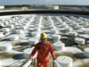 reforma hidrocarburos | Business Insider México