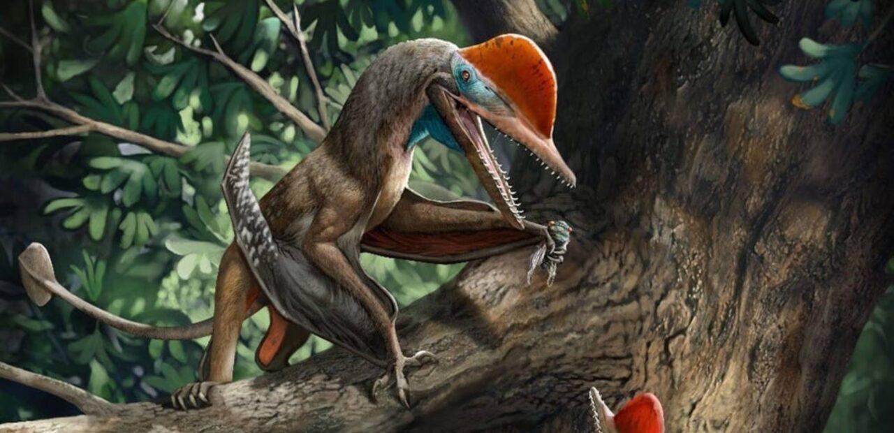dinosaurio volador
