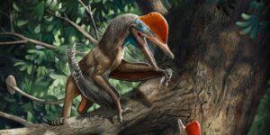 Conoce al 'Monkeydactyl', un pequeño dinosaurio volador con pulgares oponibles que se acaba de descubrir en China