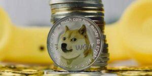 La celebración del #DogeDay ayudó a la criptomoneda nacida de un meme, el dogecoin, a convertirse en la quinta más importante por valor de mercado