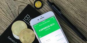 El CEO de la plataforma de intercambio Kraken pronosticó que Bitcoin puede alcanzar 250,000 dólares facilmente el próximo año