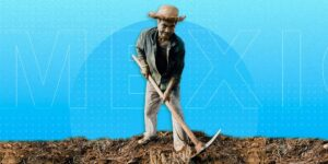 México está rezagado en la tecnología aplicada a la agricultura —pero esta plataforma quiere cerrar esa brecha