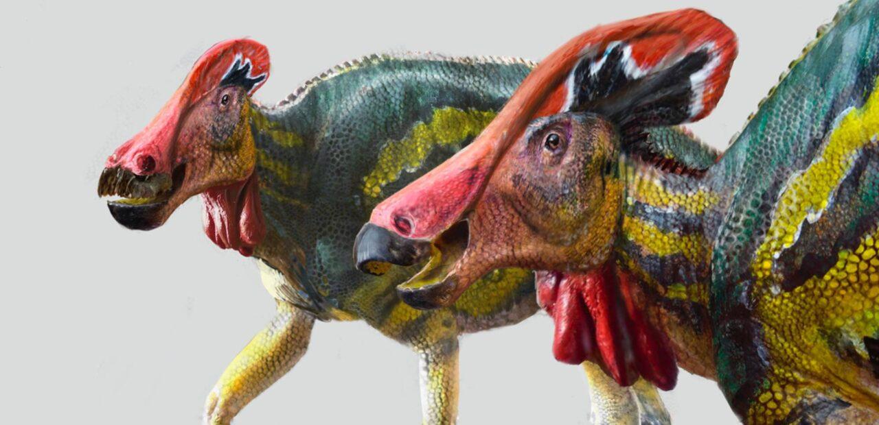 nueva especie dinosaurio | Business Insider Mexico