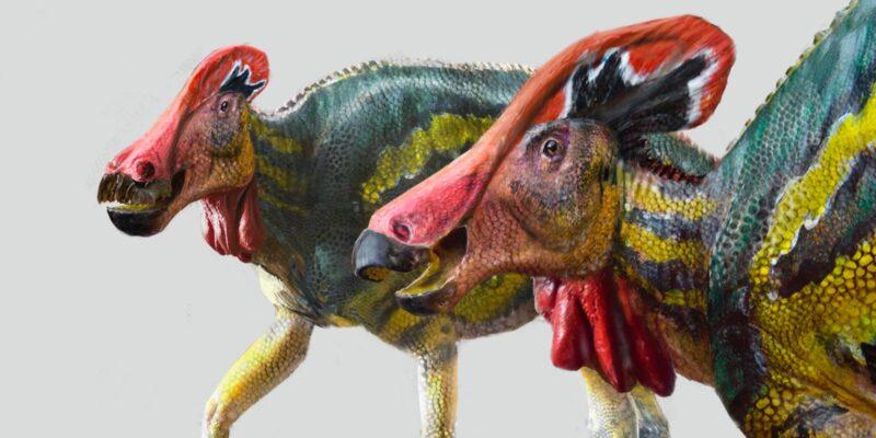 nueva especie dinosaurio   Business Insider Mexico