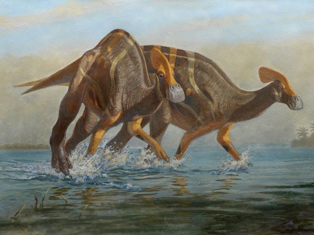 nueva especie dinosaurio
