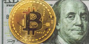La mitad de los bancos centrales en todo el mundo analizan la emisión de sus propias criptomonedas