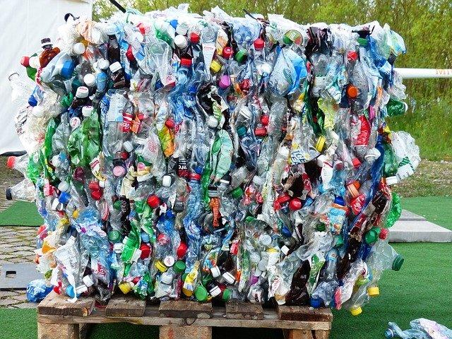 separar la basura en casa