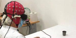 Un grupo de científicos restauró parcialmente la visión de un hombre ciego a través de terapia genética y unas gafas especiales