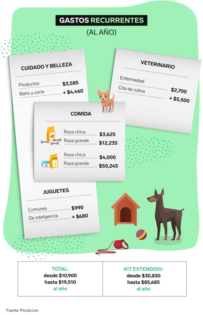 costos perro gato