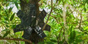 Esta grabadora que funciona con paneles solares e inteligencia artificial está salvando los bosques de la tala ilegal y la deforestación