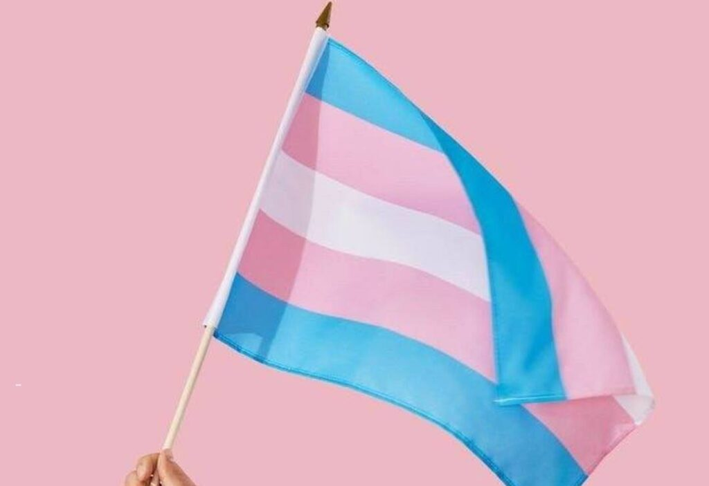 Bandera transexualidad   Business Insider México