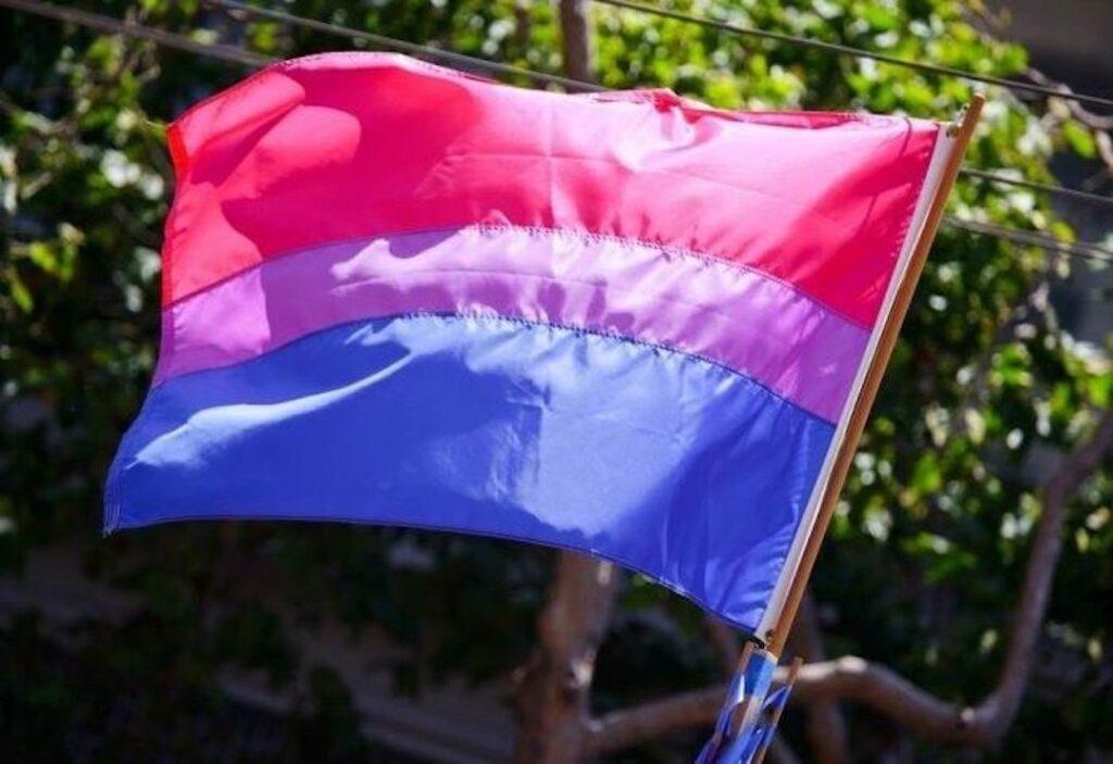 Bandera bisexualidad   Business Insider México