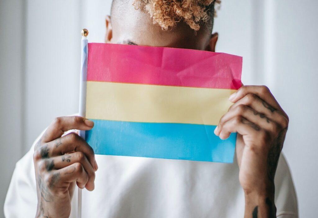 Bandera pansexual   Business Insider México