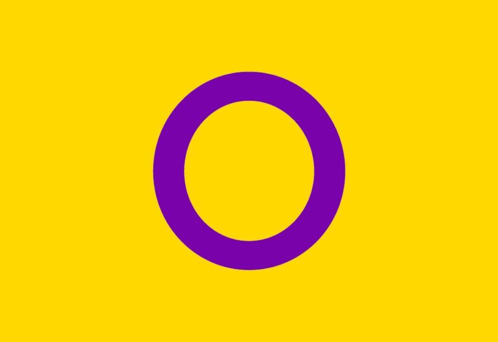 Bandera intersexual   Business Insider México