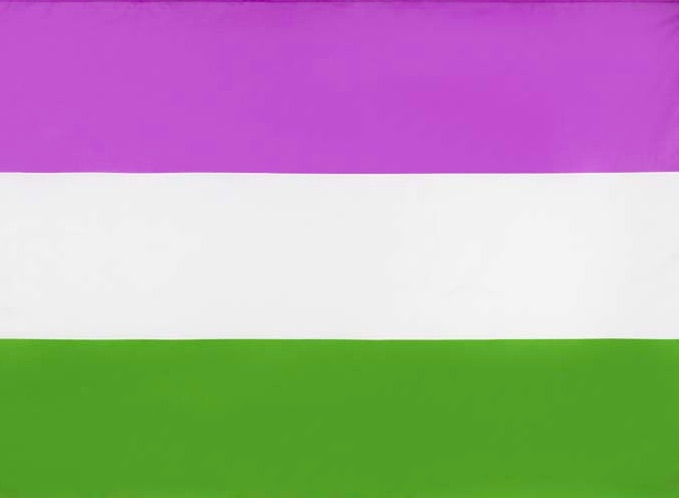 Bandera Queer   Business Insider México