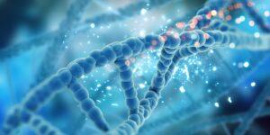 La Organización Mundial de la Salud pide compartir herramientas de edición genética con países más pobres