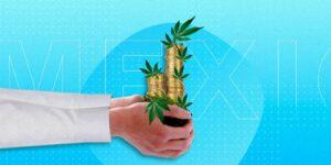 La prolífica firma de inversión de cannabis, Merida Capital, está recaudando 250 millones de dólares para un nuevo fondo