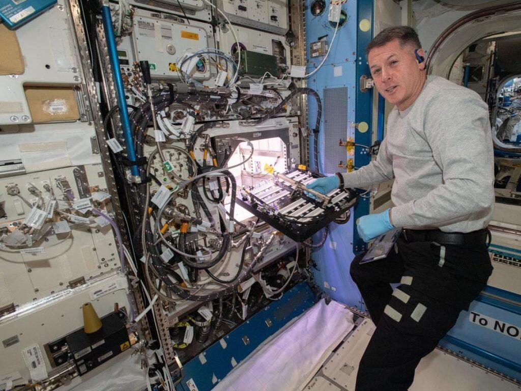 astronautas dieta