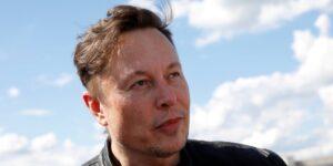 Neuralink, la startup de Elon Musk que quiere conectar tu cerebro a internet, capta 205 mdd en la mayor ronda hasta la fecha del sector