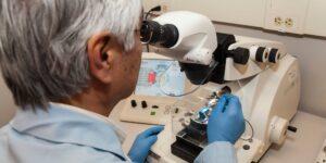 Investigadores hallan el denominador común para todos los tipos de cáncer