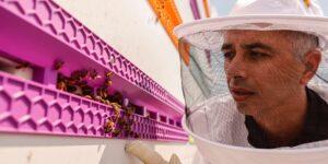 Beewise utiliza un brazo robótico para salvar a millones de colmenas de abejas