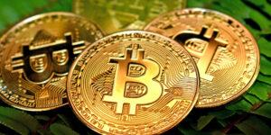 Suecia reembolsará 1.5 millones de dólares a un narcotraficante después de que sus bitcoins aumentaran de valor cuando estaba en prisión
